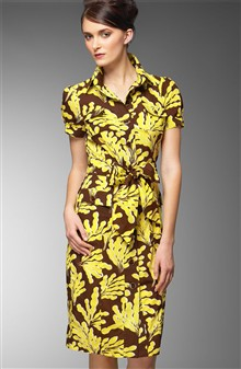 DVF shirtdress