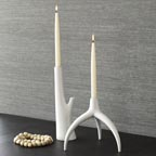 Branch Candle Holders at West Elm