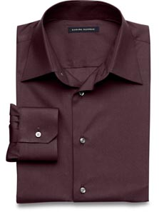 Fitted Stretch Poplin Shirt