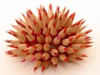 Custom Pencil Urchin