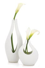 Kira Vases at Sprout Home
