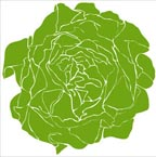 Lettuce Vinyl Wall Art