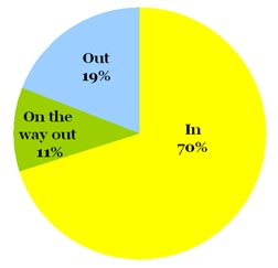 Omiru Poll Result: Bright Yellow is IN