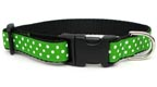 Primary Dots Medium Dog Collar