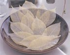 Soap Leaves at Wrapables.com