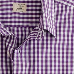secret-wash-button-down-gingham_040509